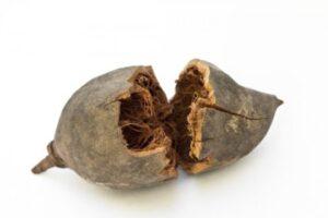 Sphinx Design Baobab Pflegeprodukte